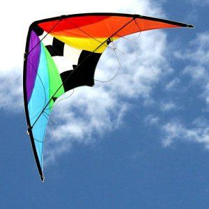 Stuntmaster Sports Kite
